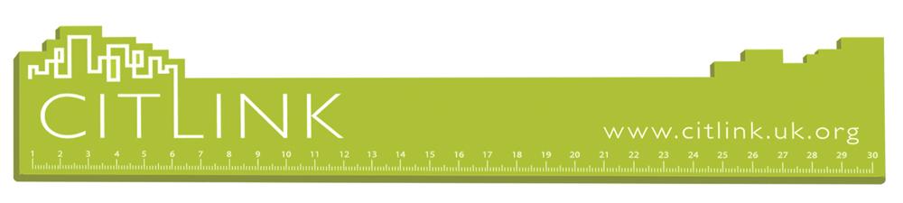 9555 lime - 30cm Bespoke Shaped Ruler